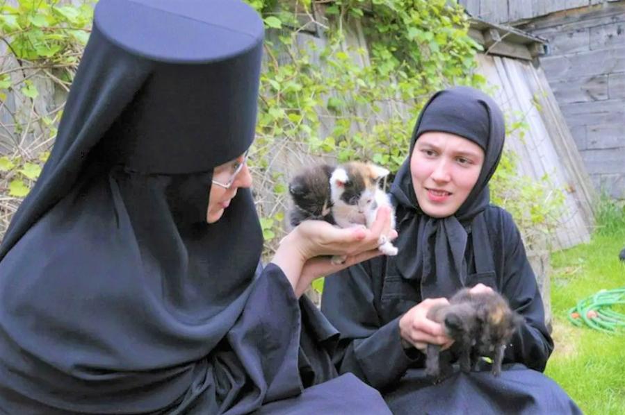 распорядок дня монахини